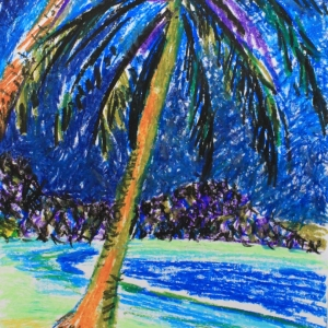 Кокосовая пальма 2014г.