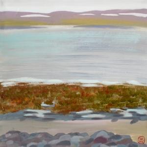 Водоросли на берегу Баренцева моря