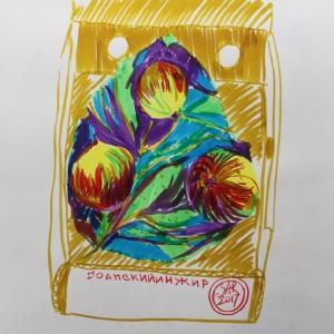 Гоанский инжир | Figs from Goa