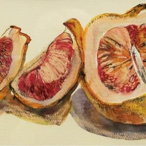 Грейпфрут | Grapefruit